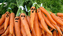 blog-carrotsfaces