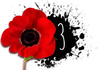 poppy 3 | Bill Wolfe | Remembrance Day